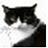 Johnny下载|计算机模拟软件(Johnny) v1.0官方版下载