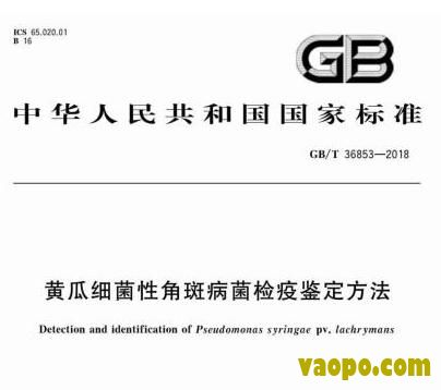 GBT36853-2018图集下载|GBT36853-2018黄瓜细菌性角斑病菌检疫鉴定方法国家标准图集下载