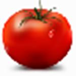 标准蕃茄钟下载|标准蕃茄钟 v1.3.0 免费版下载
