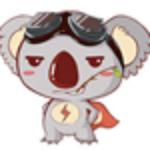 SpeedkoalaBD云加速破解版下载|SpeedkoalaBD云加速电脑版 v9.23 免费版下载