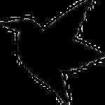迅雷助手下载|迅雷助手V1.3(含下载资源) 支持p2p引擎 电脑版下载