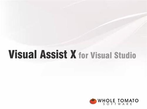 Visual Assist X 破解版软件功能
