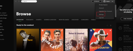 Spotify怎么设置中文2