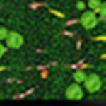 荷花池鱼地面互动软件下载|荷花池鱼地面互动工具 v2.0.1 官方版下载