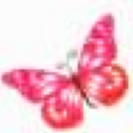 月下蝶舞写作软件免费版下载|月下蝶舞写作软件 v1.3电脑pc版下载