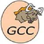 GCC编译器电脑版下载|GCC编译器 V8.3.0 汉化版下载