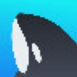 鲸鱼拍拍下载|鲸鱼拍拍屏幕录制软件 v1.2.0 官方版下载