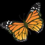 迅雷会员账号分享器下载 迅雷会员账号分享免费2021 最新版下载