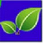 绿叶五金建材进销存管理系统最新版下载-绿叶五金建材进销存管理系统 v2021 电脑版下载
