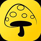 蘑菇钉自动打卡软件下载-蘑菇钉自动打卡V1.0最新版下载